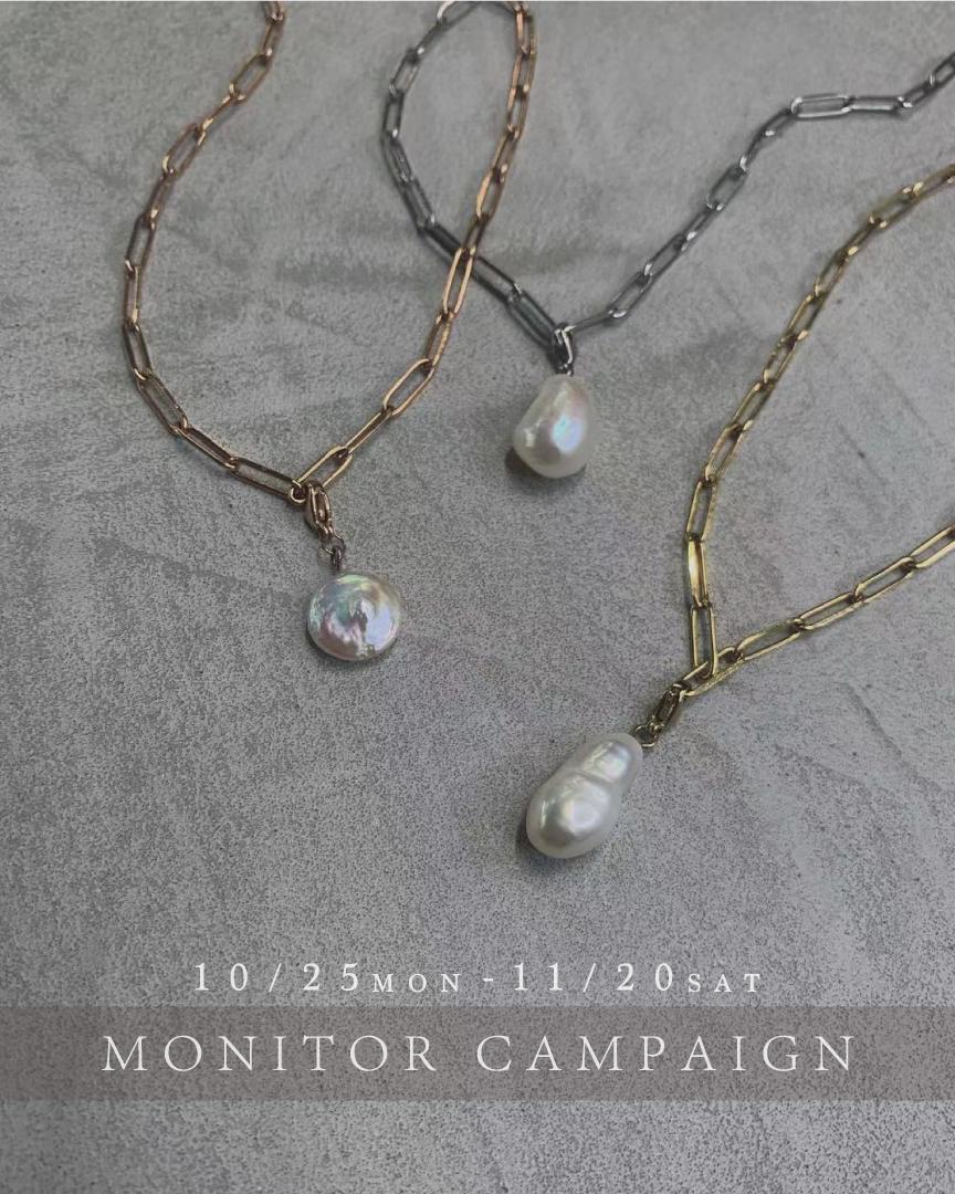 Monitor campaign